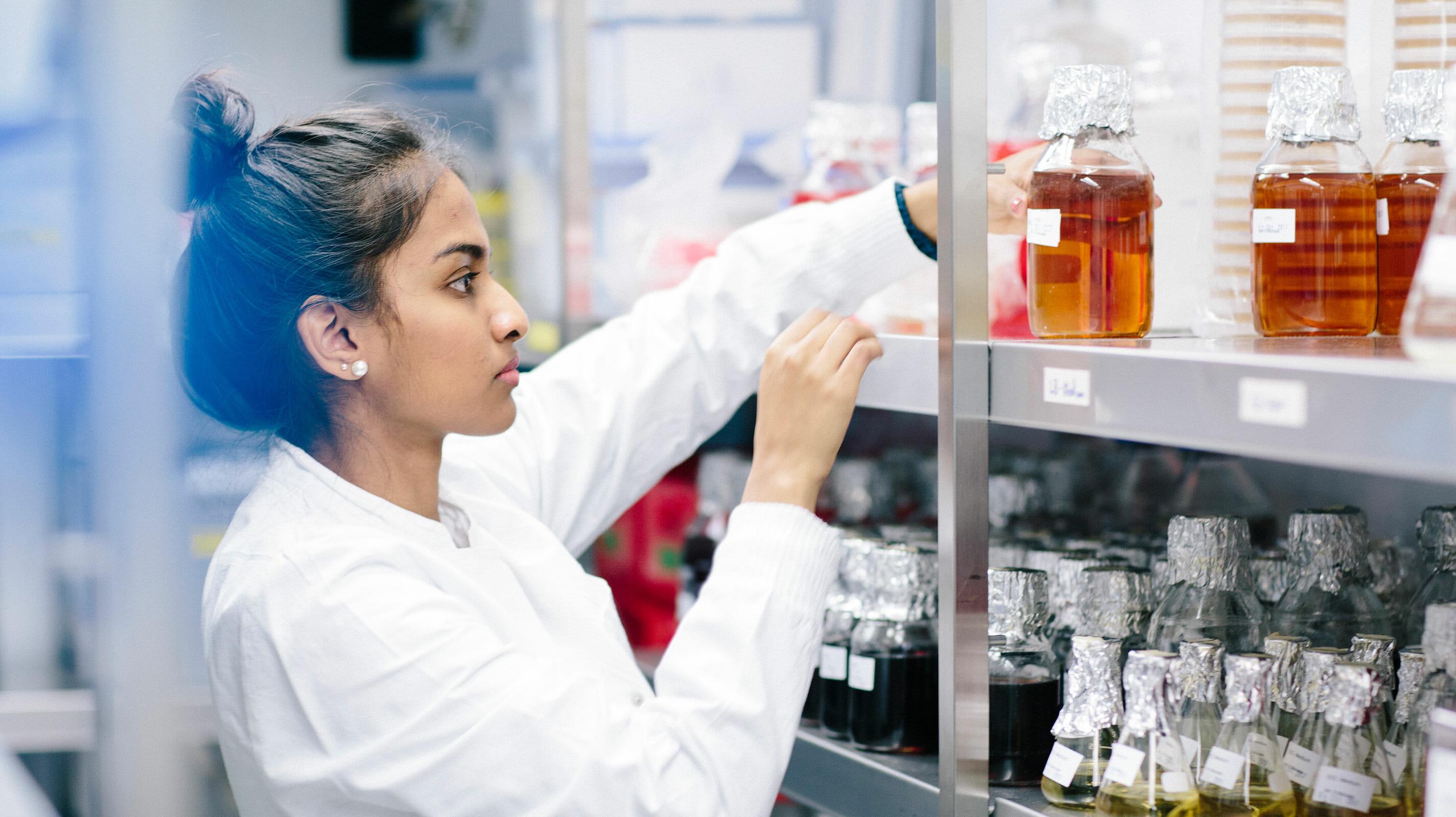 Scientist moving liquid-filled beakers